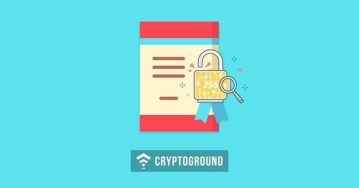 why are governments banning cryptocurrency pdf